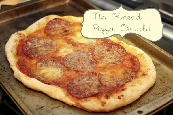 pizzasnob s no knead pizza no knead pizza dough no knead pizza ...