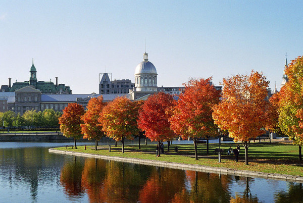 Fun things to do in montreal when you re two