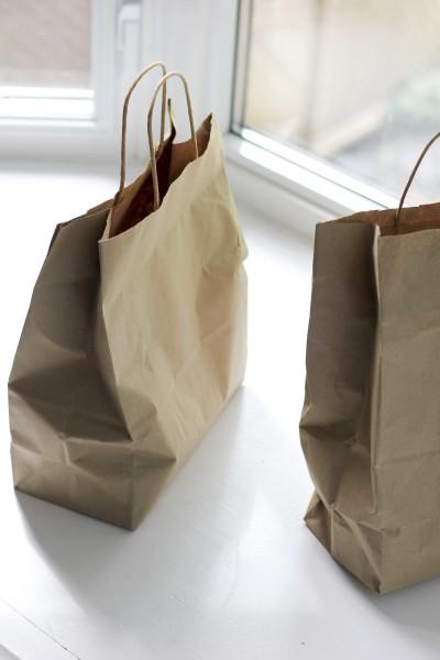 Fresh Mint Bags