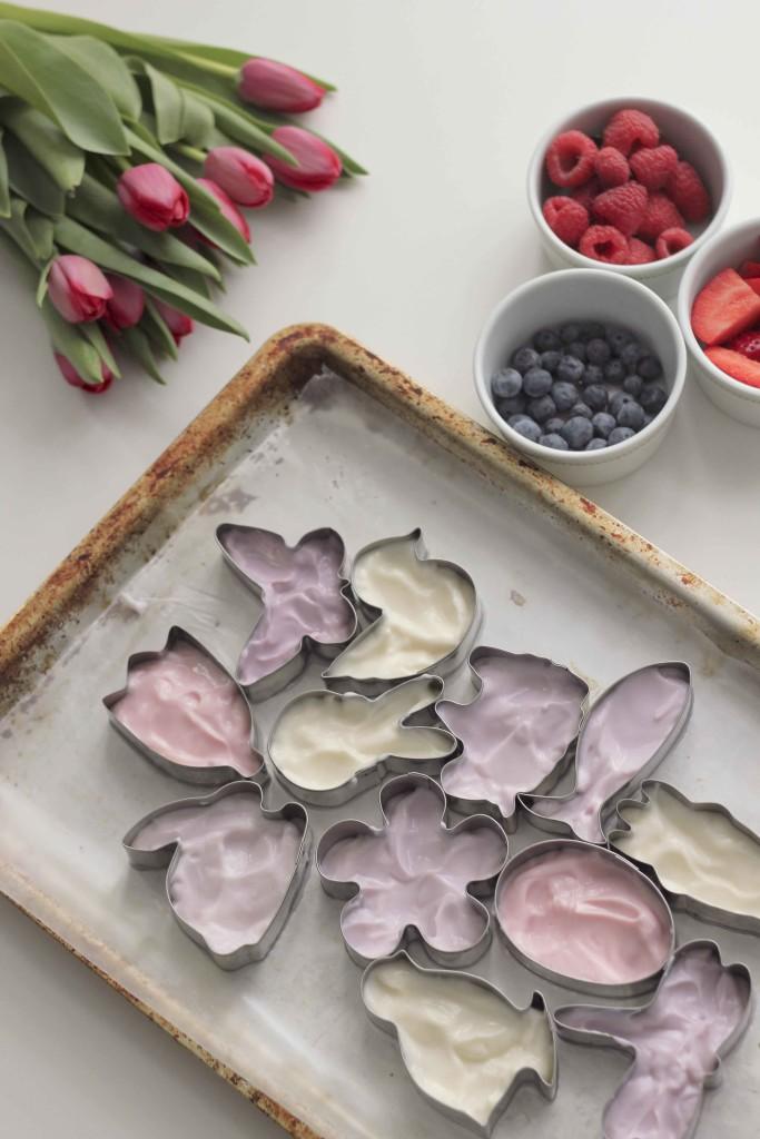 Easy Frozen Yoghurt Easter Craft (www.roastedmontreal.com)