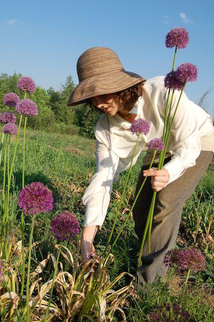 Floralia - Local Ethical Flowers |RoastedMontreal.com