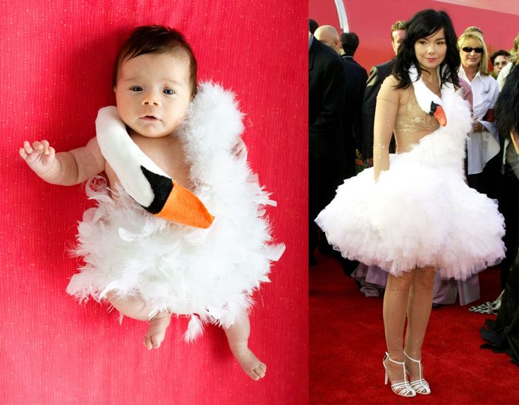 Homemade Bjork Swan Dress